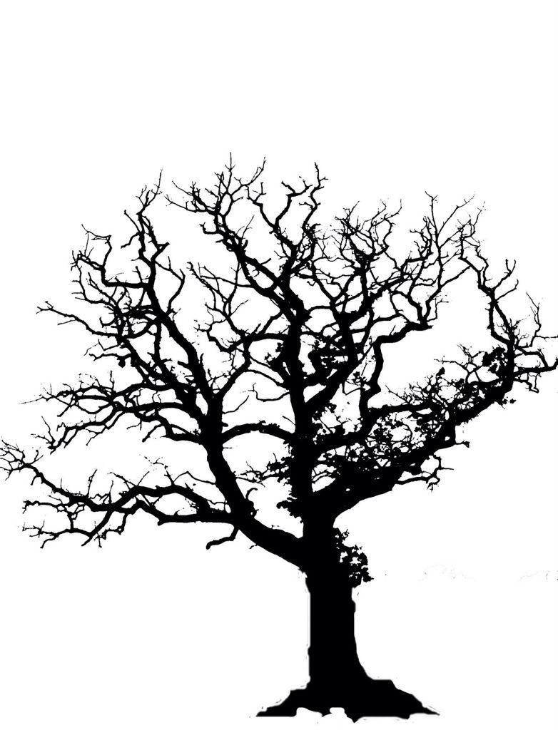 782x1024 english oak tree quilt thoughts oak tree tattoo, tree