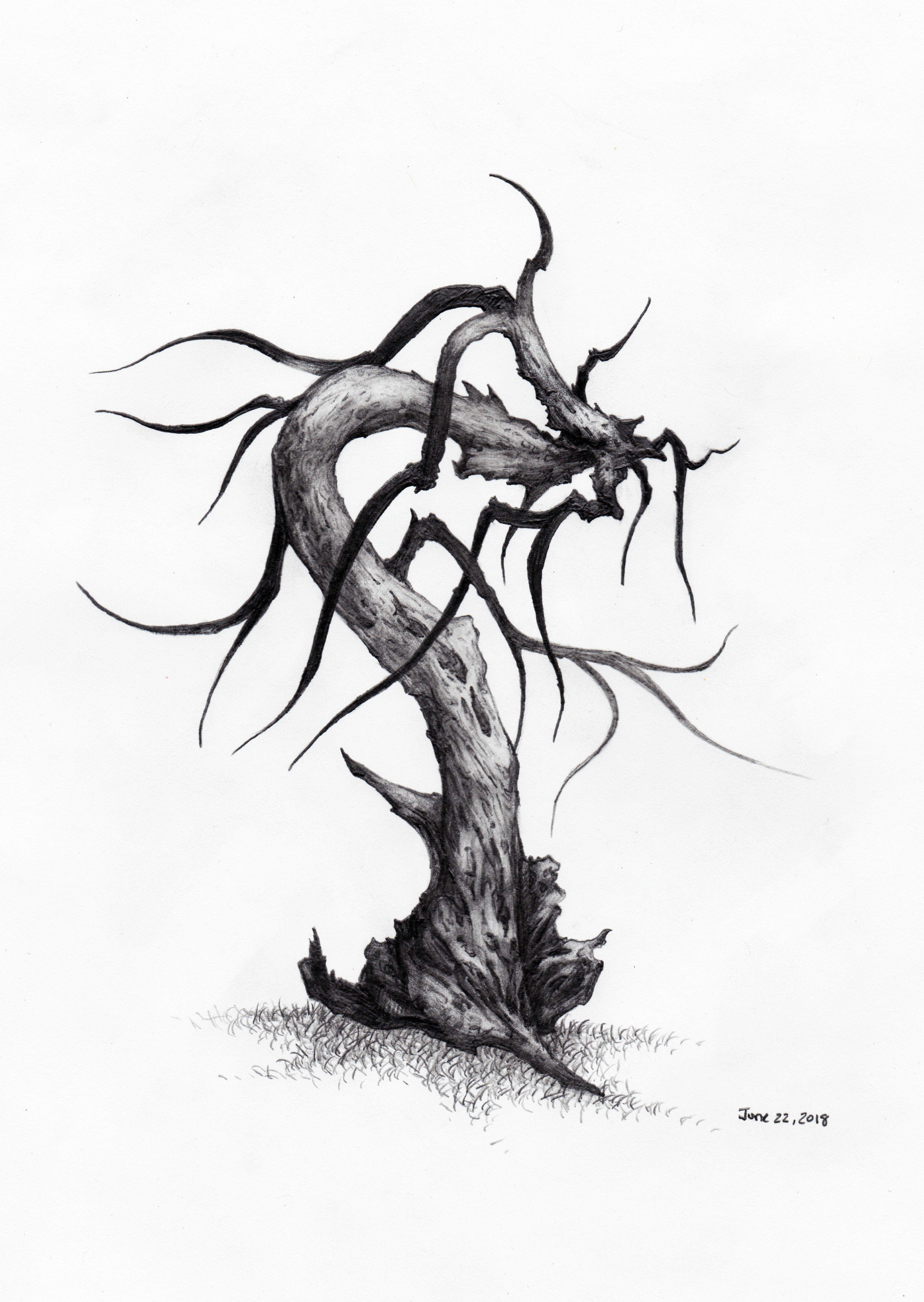 3387x4771 Daily Tree Sketch
