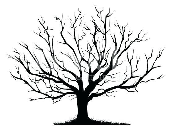 556x410 Drawing Winter Trees Oak Tree Silhouette Pencil Drawing Winter