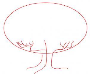 302x249 How To Draw How To Draw An Oak Tree