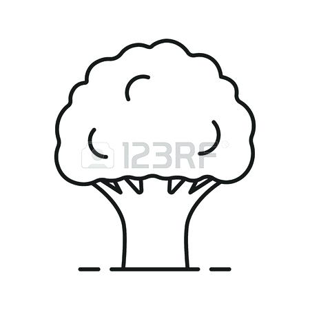 450x450 Image Result For Easy Tree Outline Drawings In Image Result