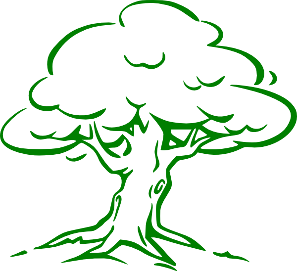 600x548 Cartoon Tree Imges Green Oak Tree Clip Art
