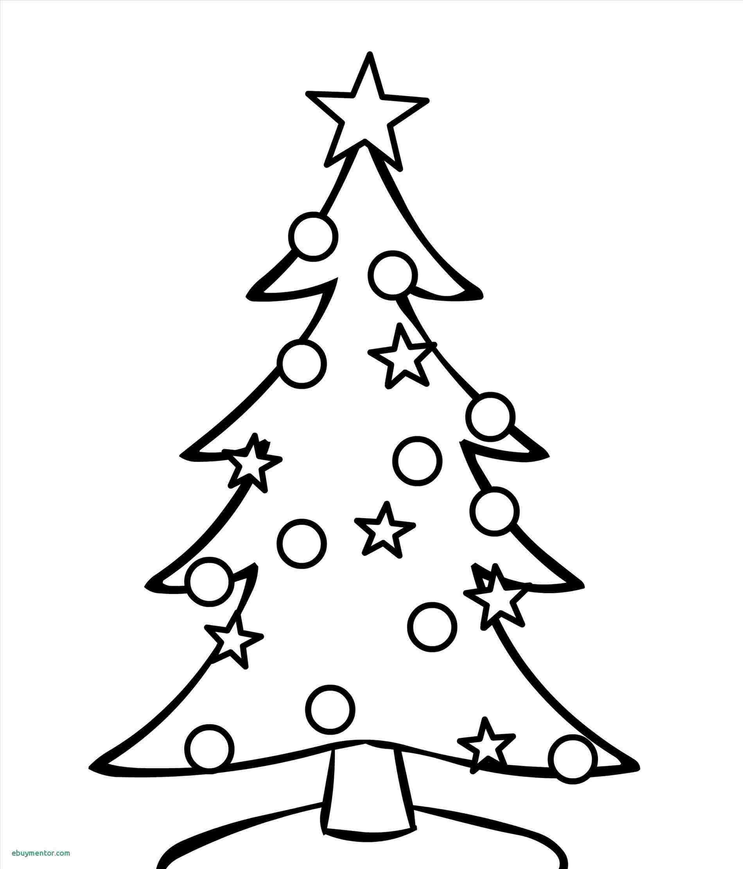 1900x2224 Art Th Grade Rhcom How Oak Tree Drawing Easy To Draw