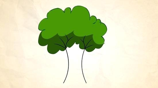 550x309 Basic Tree Drawing Oak Tree Drawings With Roots Illustrators