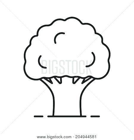 450x470 oak tree outline free oak tree leaf outline