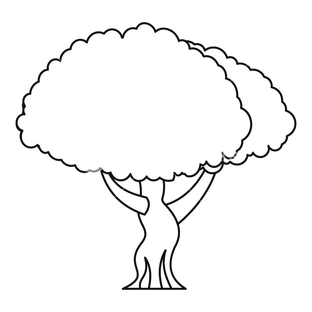 1000x1000 oak tree icon outline illustration of oak tree vector icon