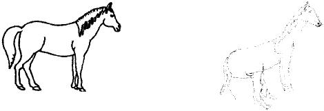 470x161 An Original Line Drawing Taken From The Birmingham Object