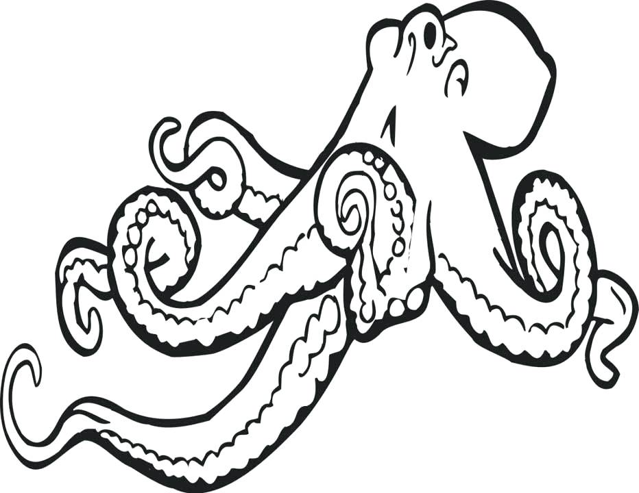 932x720 drawings of octopus drawing octopus octopus coloring pages