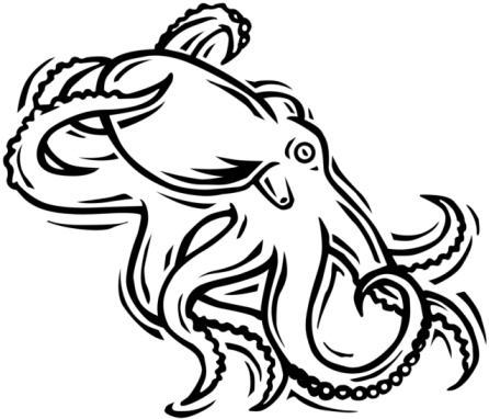 Octopus Outline Drawing