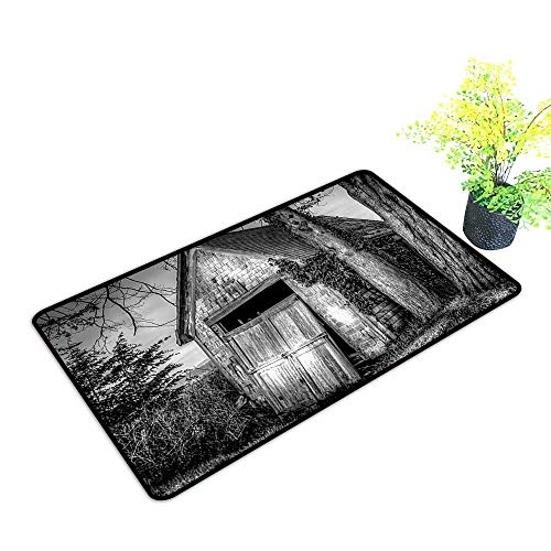 500x500 Gmnalahome Waterproof Indoor Door Mat Old Ruined