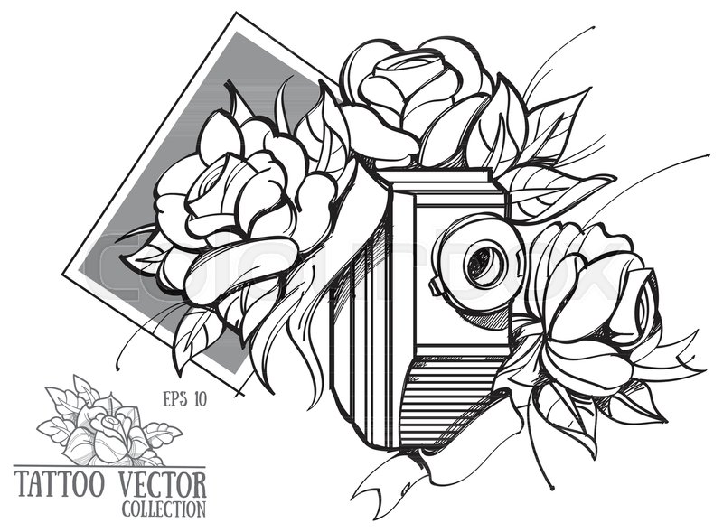 800x589 Hand Drawing Flowers And An Old Stock Vector Colourbox