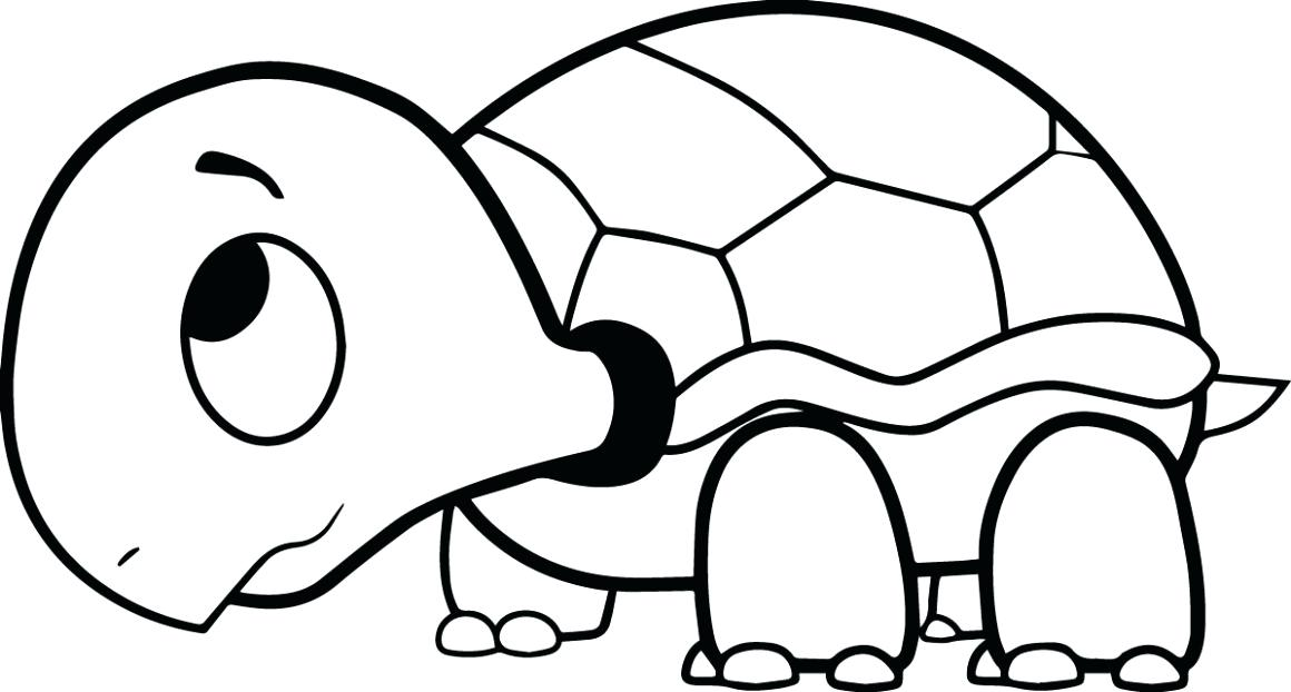 1160x622 Turtle Cartoon Drawing