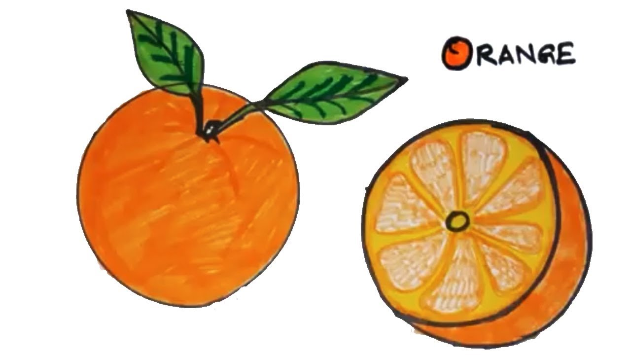 1280x720 How To Draw An Orange Easy Drawing For Kids Online Drawing