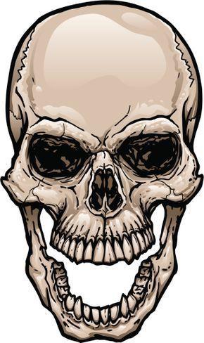 290x488 Viking Skull, Skull Stencil, Skull Sketch
