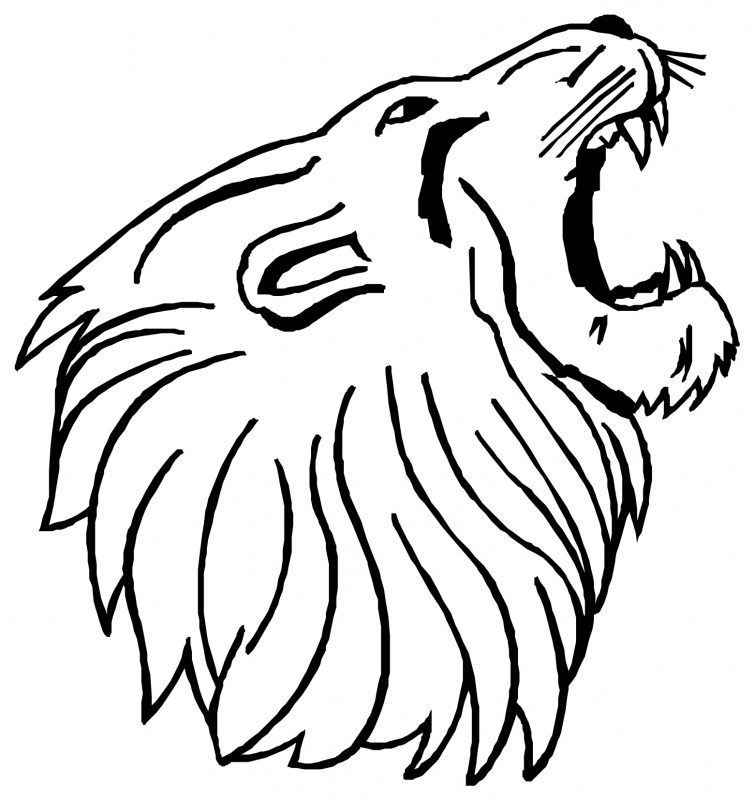 754x800 Collection Of 'lion Mouth Drawing' Download More Than Images