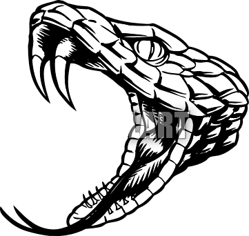 361x342 Collection Of Free Rattlesnake Drawing Open Mouth Download On Ui Ex