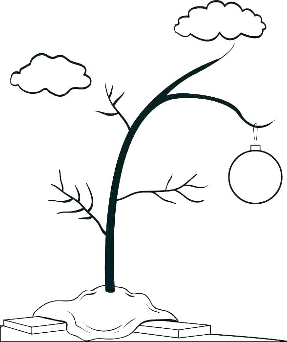588x700 orange coloring pages color orange coloring pages orange tree