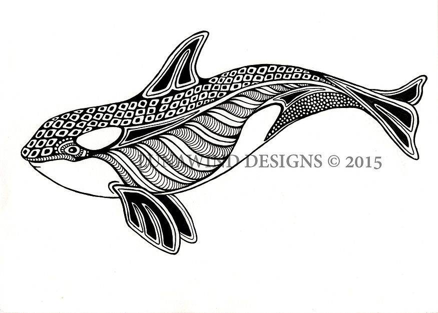 Orca Whale Drawing