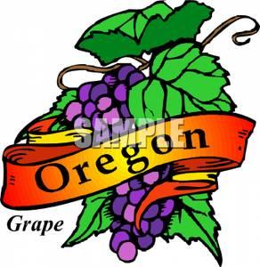 292x300 Oregon State Flower, The Grape