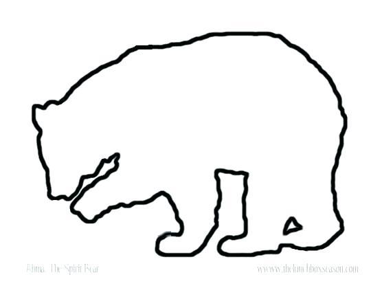 556x419 Polar Bear Outline Image Polar Bear Outline Pdf