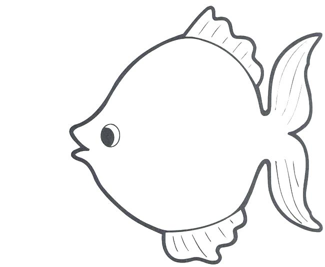 650x534 rainbow fish outline fish outline drawing fish drawing outline