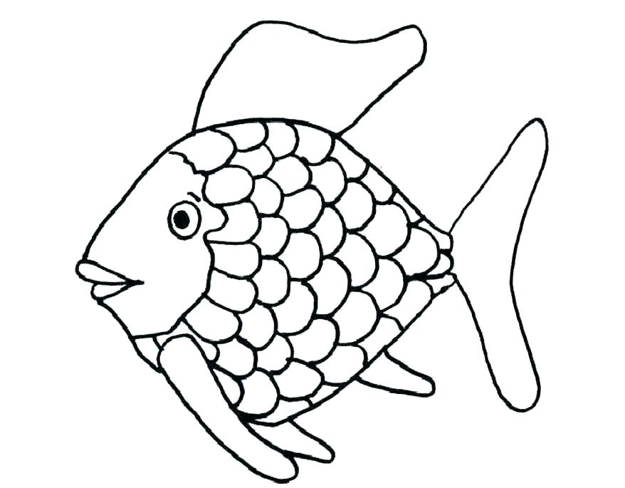 878x685 clown fish outline coloring pages of a fish clown fish coloring