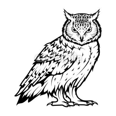 400x400 Owl Logo Wild Birds Drawing Head Of An Owl Vector Graphics