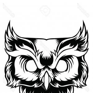 300x300 Stock Illustration Owl Logo Wild Birds Drawing Soidergi