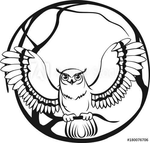 500x477 Black And White Owl Sitting On A Branch Tree Circular Design