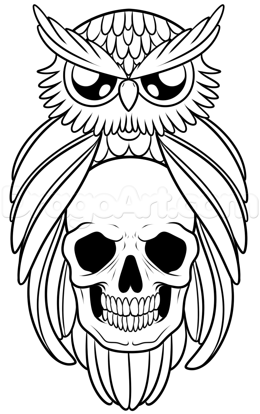 839x1334 How To Draw An Owl And Skull Tattoo Step Owls! Owl Skull