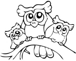 300x239 Cute Owl Drawing For Kids And Coloring Pages Owls Colouring