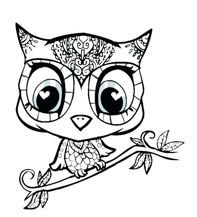 750x825 Coloring Picture Of An Owl Sesame Street Pictures Color