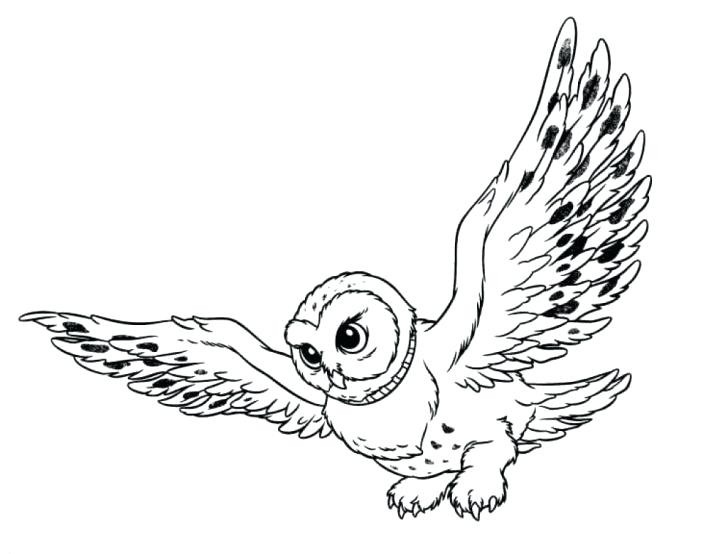 728x554 Free Printable Christmas Owl Coloring Pages Colouring Burrowing