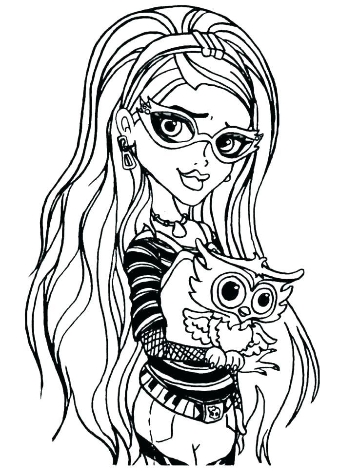 736x977 Owl Color