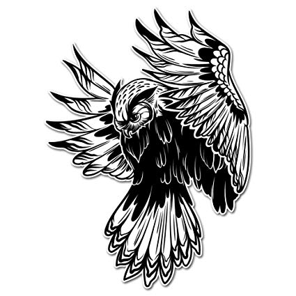 425x425 Majestic Flying Black And White Owl