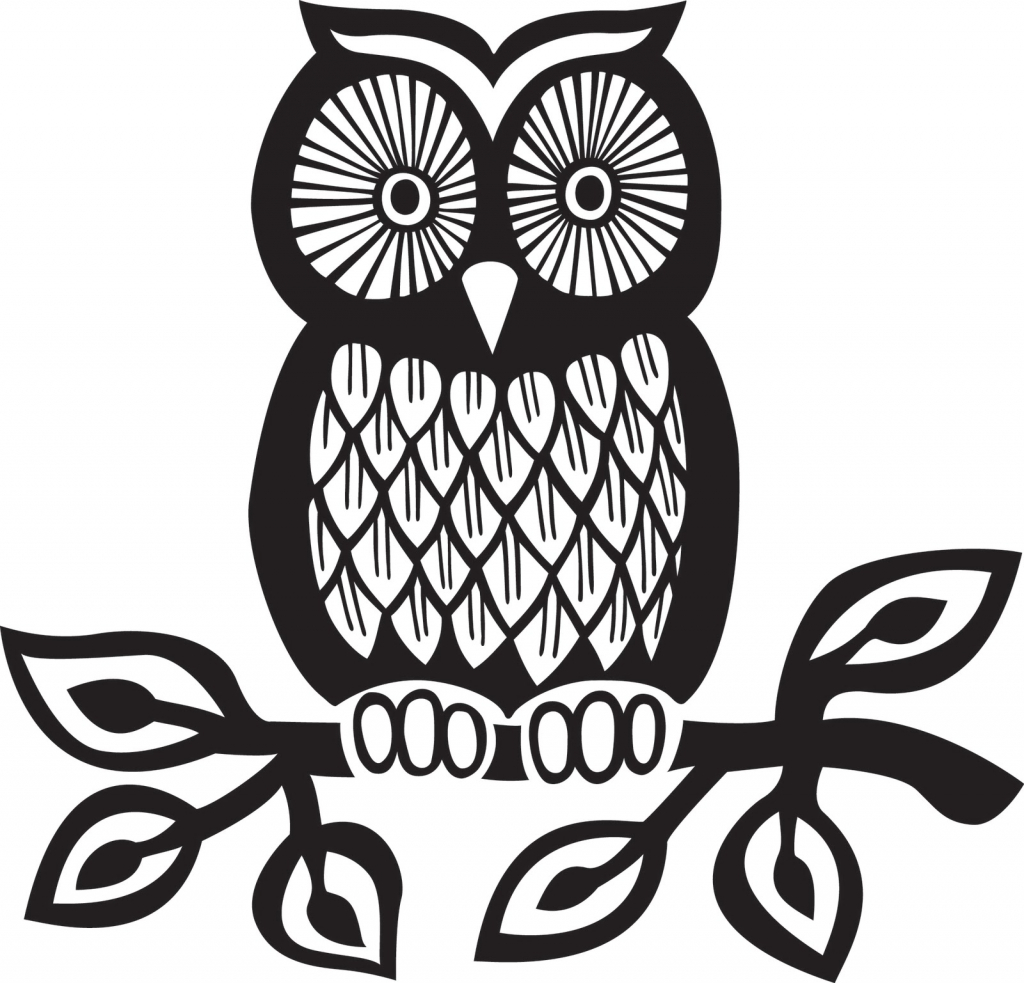 1024x983 Simple Owl Sketch Drawing Clipart Owl Pencil And In Color Drawing