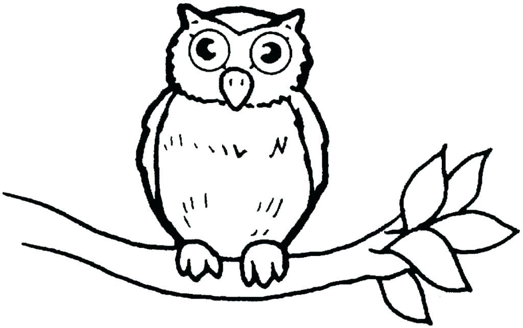 1024x643 Coloring Book Owl Mebelmag