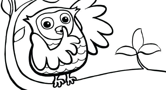 570x310 Coloring Pages For Boys Halloween Cat Owl Preschool Owls Colouring