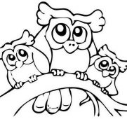 181x170 Coloring Pages Of Owls Free Printable Owl For Kids Simple Drawings