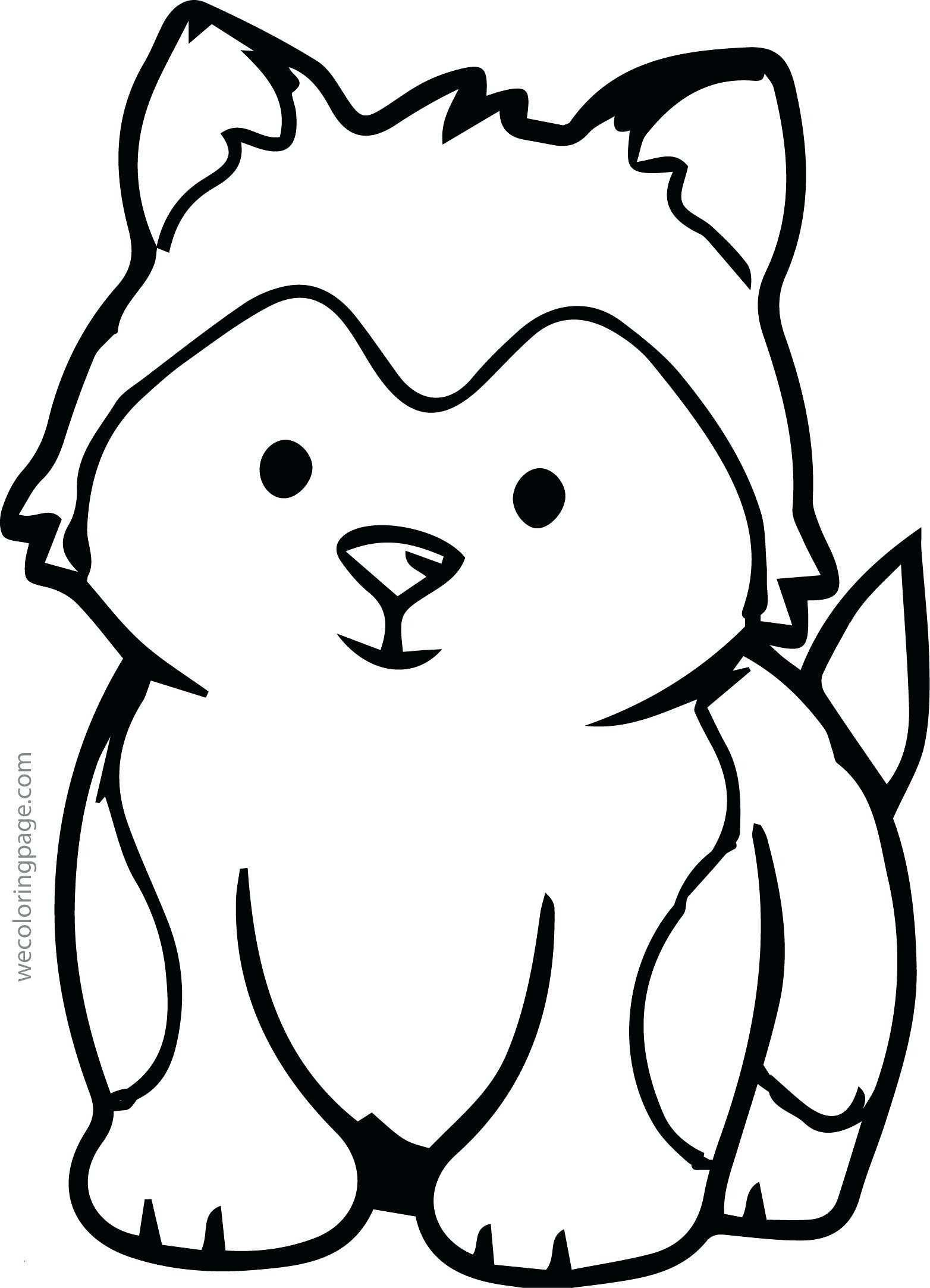 1564x2165 Coloring Pages To Color For Free New Printable Coloring Pages Owls