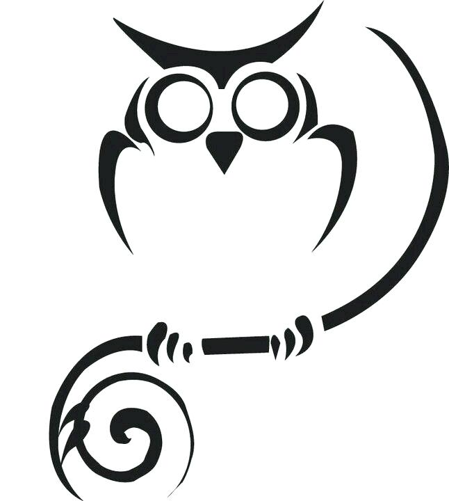 646x720 owl outline drawing owl outline owl face outline drawing