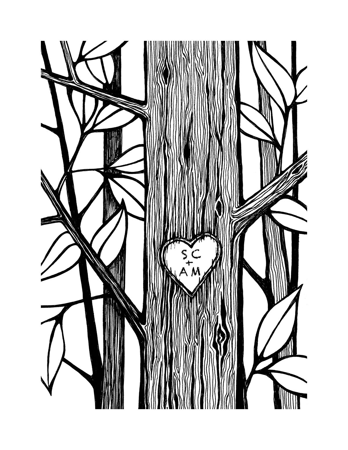 Owl In A Tree Drawing