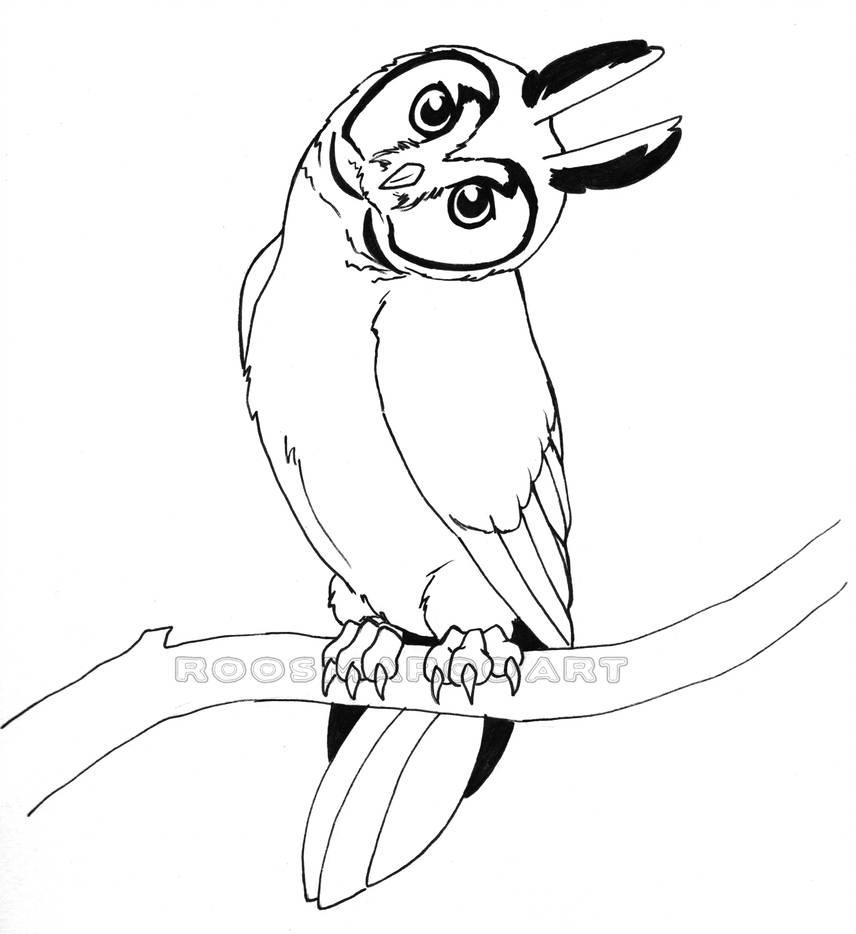 856x934 long eared owl line art