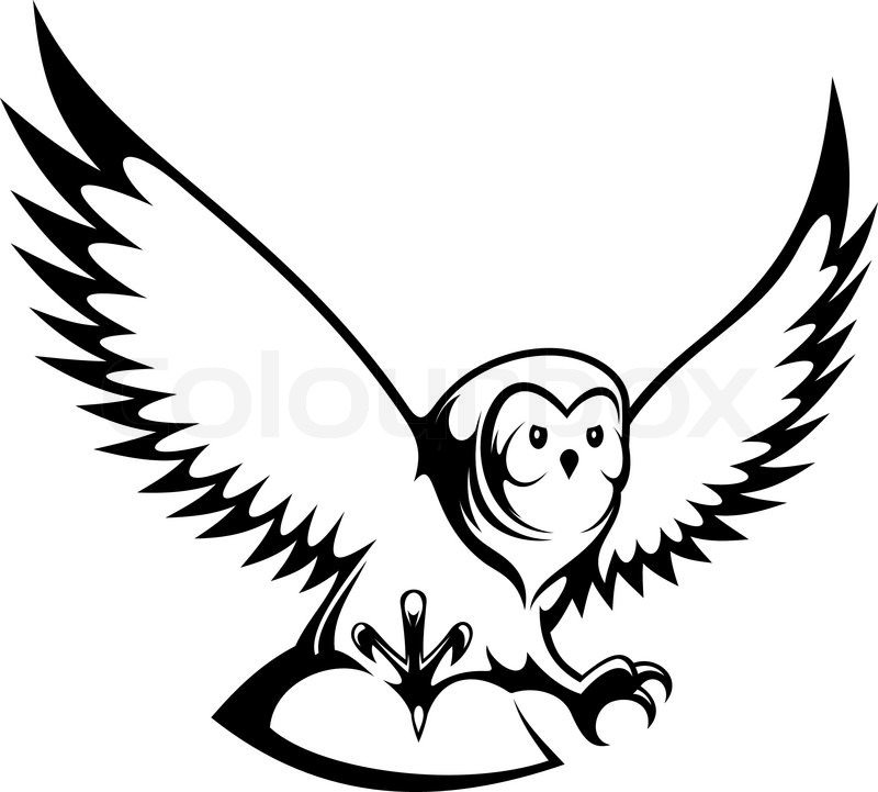 800x721 Flying Owl For Mascot Or Tattoo Design Stock Vector Colourbox