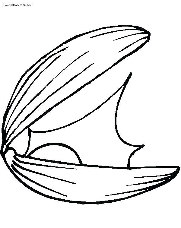 600x756 clam drawing clam giant clam giant clam shell drawing