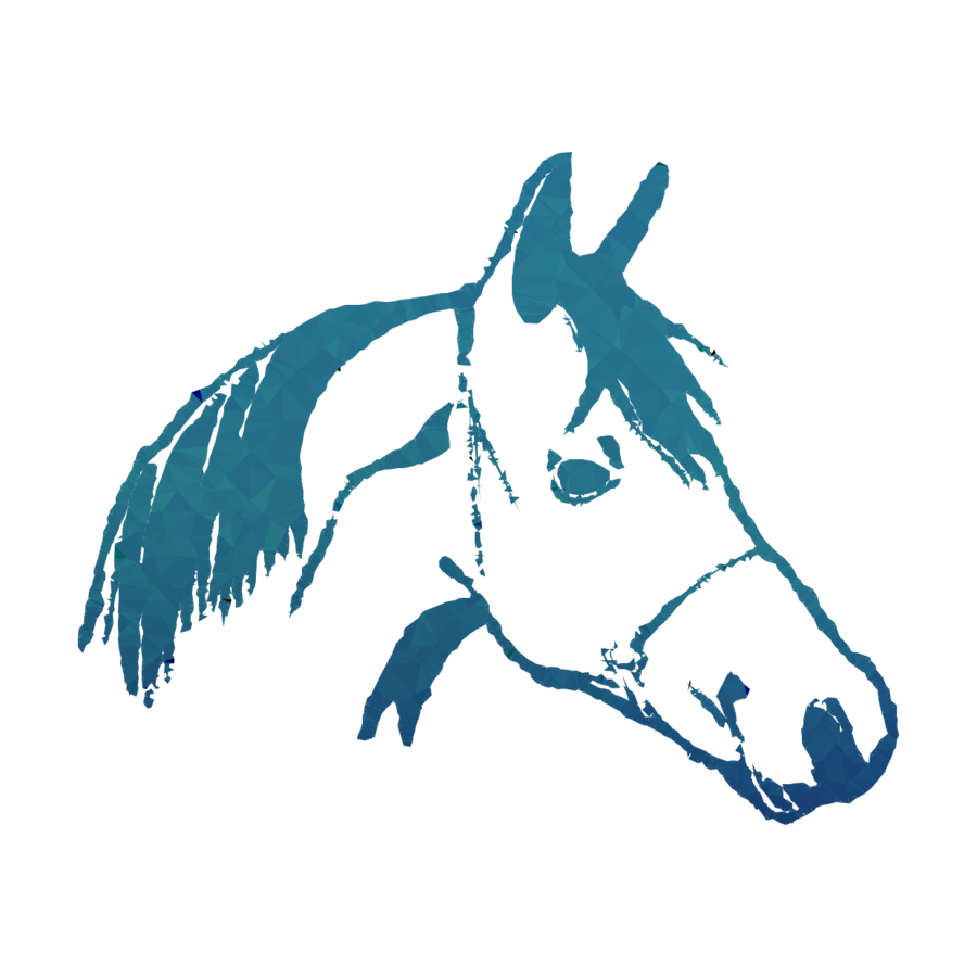 900x900 Illustration, Horse, Head, Transparent Png Image Clipart Free