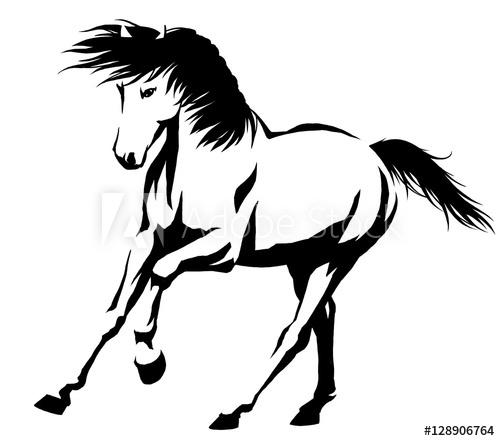 500x441 Black And White Linear Paint Draw Horse Illustration