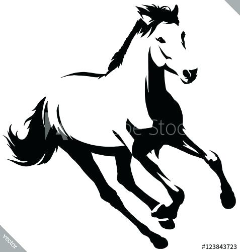 477x500 Black And White Horse Head Drawings How To Draw A Jumping