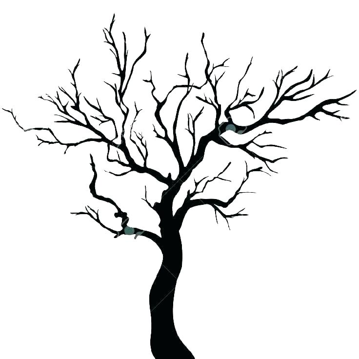 photograph relating to Tree Outline Printable identified as Variety of Tree define clipart Totally free down load least difficult Tree