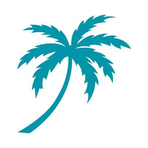 500x500 how to draw palm trees easy elegant elegant palm trees drawing